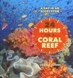 24 Hours on a Coral Reef
