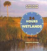 24 Hours on the Wetlands