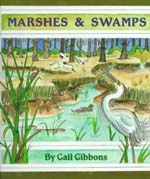 Marshes and Swamps 2