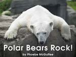 Polar Bears Rock