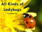 All Kinds of Ladybugs