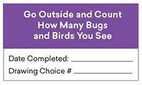 Summer Reading Activity Go Outside and Count Birds